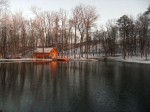 Winter scene #1